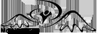 МСМ Армения Logo